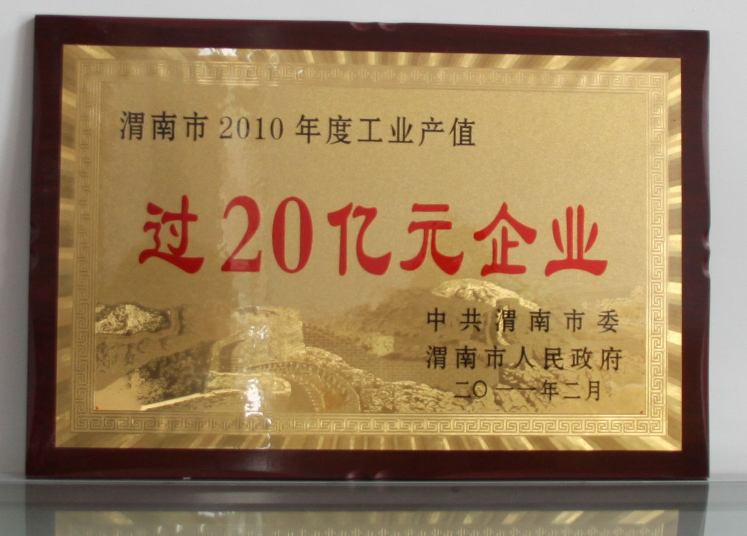 渭南市2010年度工业产值过20亿元企业